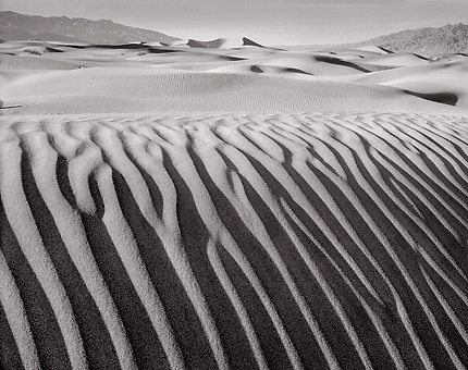 Dune Detail, Death Valley. Black and white photograph
