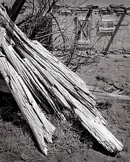 Weathered Log, Cabezon Ghost Town, New Mexico. Black and white photograph